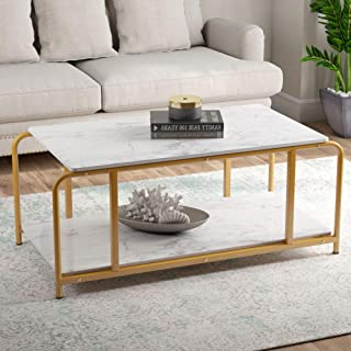 Tribesigns Modern Coffee Table with Storage Shelf for Living Room, Faux White Faux Marble Look Accent Furniture with Gold Metal Frame, Easy Assembly, 19.68'' H x 47.24'' W x 23.62'' D