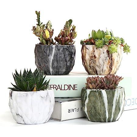 Planters Stunning Plant Flower Pots Stone Ceramic Zinc Striking Colours