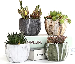 Ceramic Decorative Planters | Amazon com