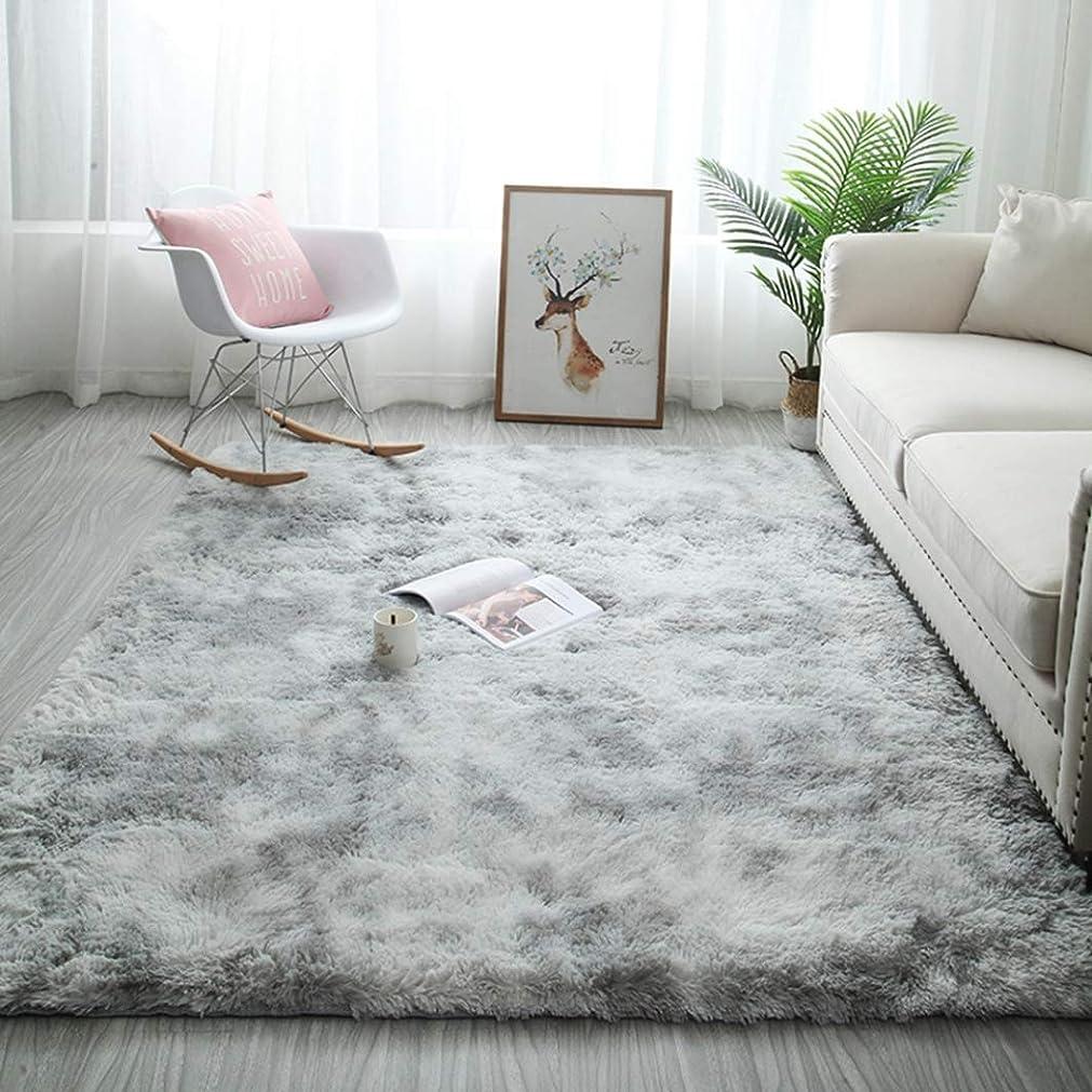 スナップ顕現硬いラグマット カーペット シャギー 北欧 おしゃれ 洗える 160×230cm 絨毯 長毛 クラーデション ふわふわ 気持ちいい 滑り止め 床保護マット 抗菌防臭 防音 寝室 リビング 雰囲気