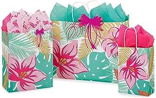 Best tropical gift bag Reviews