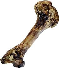 large femur bones for dogs