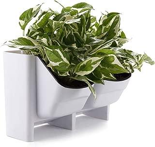 Best indoor living wall planter Reviews