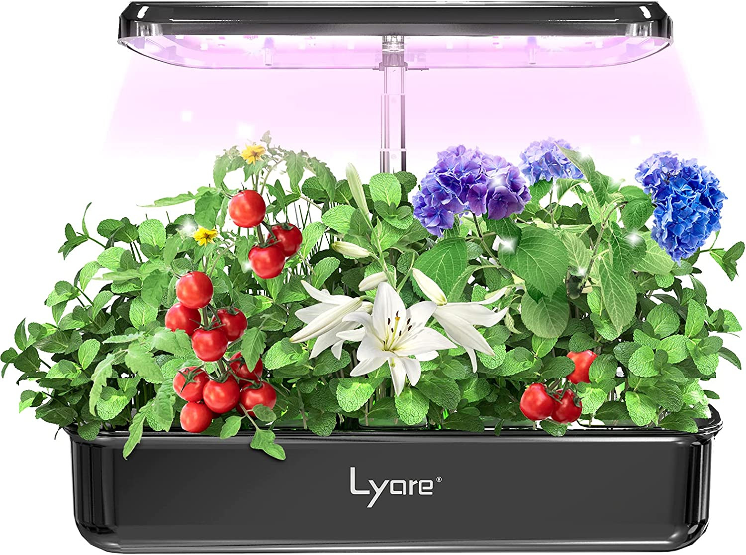 Lyare Hydroponics Growing System,10 Pods Indoor Herb Garden Kit with LED Grow Light, Height Adjustable Smart Garden Planter, Automatic Timer Germination Kit for Home Kitchen Gardening Herb Starter Kit