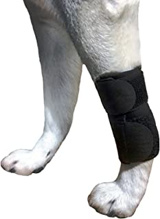 Dog Canine Front Leg Compression Brace Wrap Sleeve Protects Wounds Brace Heals and Prevents Injuries and Sprains Helps with Loss of Stability Caused by Arthritis by My Pro Supports