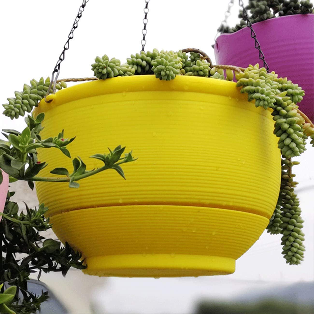 Homeleaf 2 Bombing free shipping Pack Plastic Hanging Detachable Challenge the lowest price Basket with B Planter