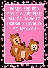 Roses are Red Violets are Blue all my naughty thoughts involve Me and You: Journal, Funny valentine's day gift for her or ...