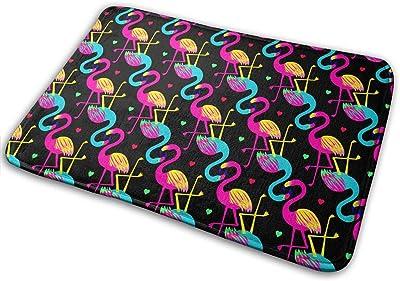 Bright Flamingo Birds Carpet Non-Slip Welcome Front Doormat Entryway Carpet Washable Outdoor Indoor Mat Room Rug 15.7 X 23.6 inch