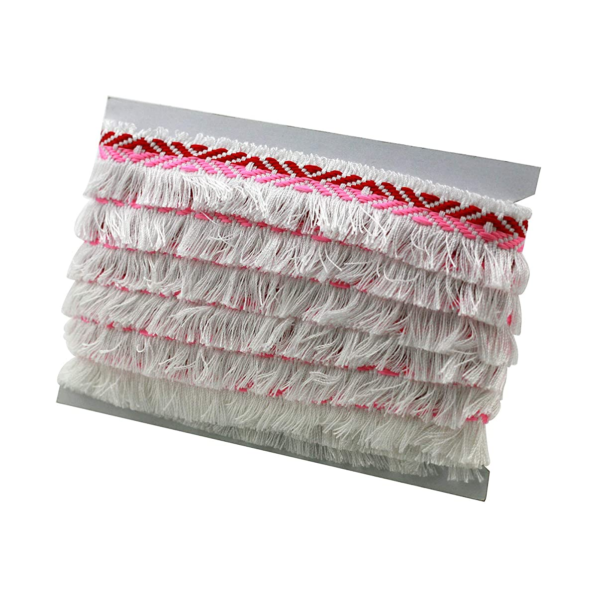 Braid Fringe Trim with One Edge Tassel, Polyester/PP Material, Pink/Red, 1.06inches x 10yd (2.7cm x 9.1m)