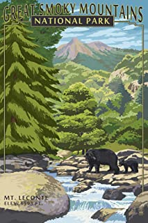 Great Smoky Mountains National Park Vintage Poster
