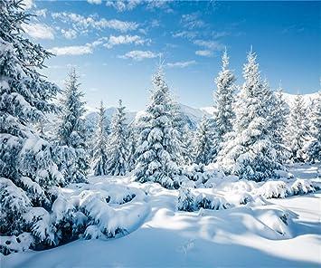 Amazon Com Aofoto 100 1 X 11 5 Ft Paisaje Nevado Paisaje De Fondo De Bosque De Nieve Para Fotografia De Invierno Campo De Nieve Paisaje Cubierto De Nieve Abeto Pino Cielo Al Aire Libre