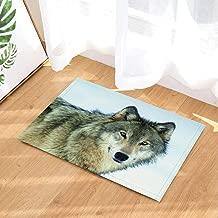 Wild Animal Bath Rugs,Winter Lone Wolf in Snow Cold Solitude,Non-Slip Doormat Floor Entryways Indoor Front Door Mat,Kids Bath Mat,15.7x23.6in,Bathroom Accessories