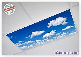 Cloud 011 2x4 Flexible Fluorescent Light Cover