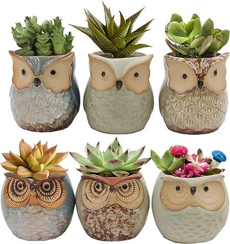 Set of 6 Owl Pots, Cute Little Ceramic Succulent Pots Cactus Plant Pot Flower with Water Drainage (SIX POTS # 1)