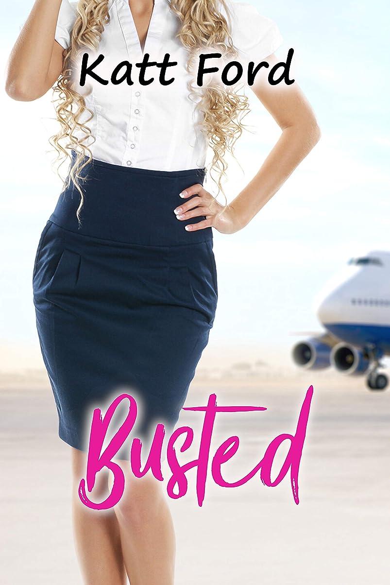 歴史家バレーボール時折Busted (Employee Of The Year Book 9) (English Edition)