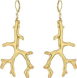 Polished Gold Branch Eurowire Ear Earrings