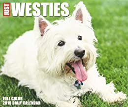 Just Westies 2019 Box Calendar (Dog Breed Calendar)