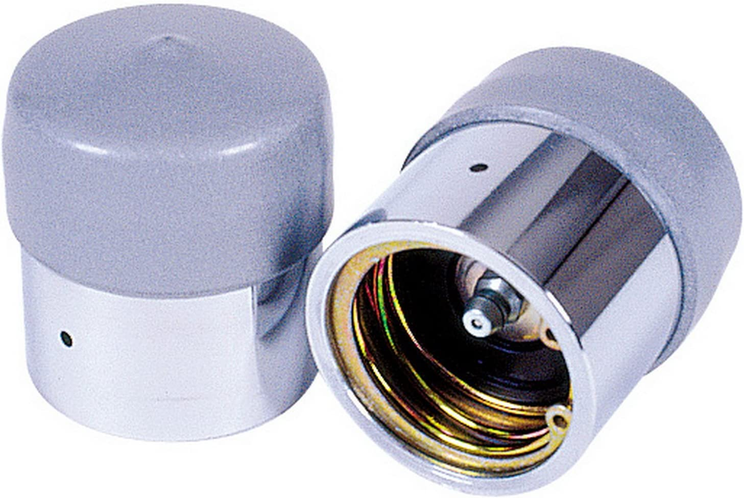 Reese Towpower 74177 Wheel Bearing and Grey Chrome Las Vegas Super special price Mall Protector