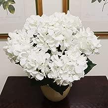 Best hydrangea plant centerpieces Reviews