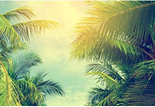 Cassisy 2,2x1,5m Vinilo Tropical Telon de Fondo Moda Verde de la Selva Vista De Hojas De Palma Vista del Atardecer Fondos para Fotografia Party Photo Studio Props Photo Booth