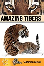bengal tiger drawing step by step