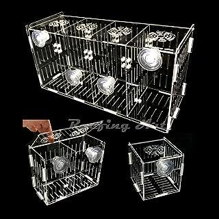 Reefing Art - Acrylic Acclimation Box (Suction Cups) Fish Breeder Nursery Isolation Tank …