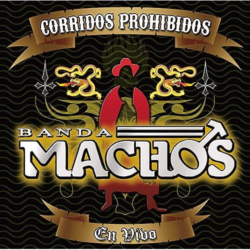 El Estuche Dorado (Album Version) de Banda Machos en Amazon Music - Amazon.es