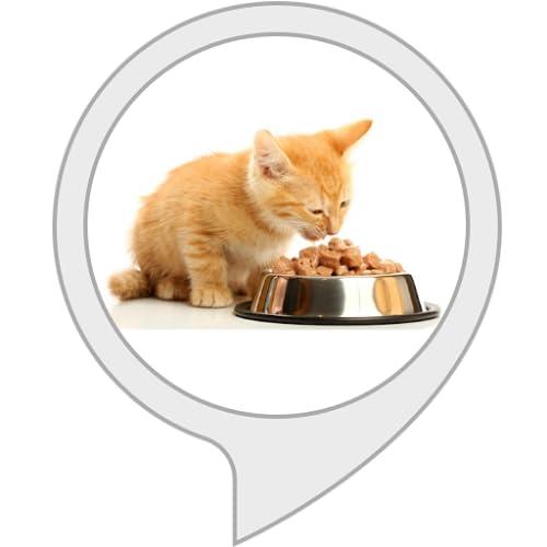 Cat Feed Tracker