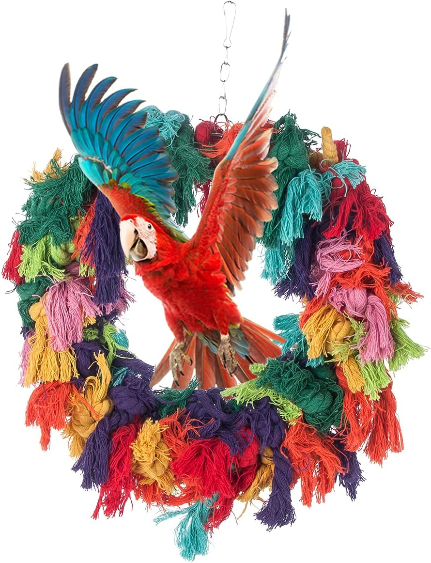 Bird Colorful Cotton Rope Hanging 67% OFF of fixed price Preening Grooming Popular standard Ring Parrot
