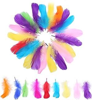 PTCOME 350pcs Plumes Loisirs Creatifs Colorées Plumes de Multicolore 9 Couleurs Plumes Fournitures D'Artisanat pour Enfant...