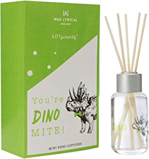 Wax Lyrical Giftscents Reed Diffuser 40ml Dinomite
