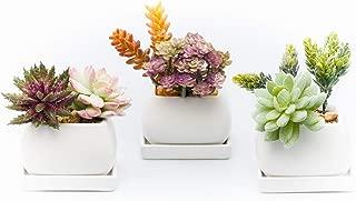 Succulent Pots - Mini Ceramic Flower Planter Pot Containers, Cactus Planter, with Drainage Hole, Set of 3pc White Square