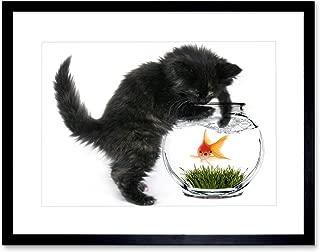 The Art Stop Photo Black Kitten CAT Playing Goldfish Bowl Home Framed Print F12X2820