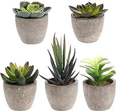 Yardwe Kunstvetplanten, 5 stuks, met potten, tafeldecoratie, huistuin, decoratie