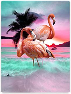 Throw Blankets Fleece Blanket for Sofa Bed Beautiful Flamingo Beach Sea 60