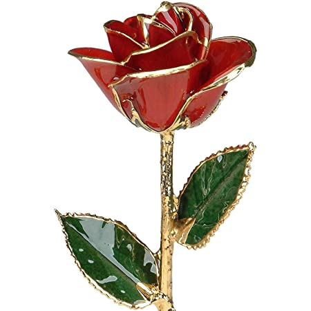 Eternal Rose Goldenrod Gift Eternal Cuff Links Real Rose Cuff Links Real Rose Dipped In 24K Gold