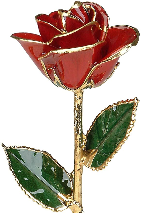 Amazon Com Red 24k Gold Rose By Living Gold Real Rose Dipped In Gold Home Kitchen
