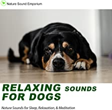 Relaxing Sounds For dogs - Nature Sounds for Relaxation, Meditation, Studying & Deep Sleep