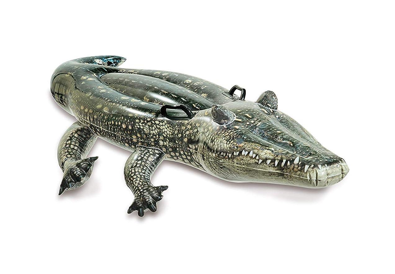 Intex Realistic Gator Ride-one, Age 3+, Multi-color, 6x67x34 inches