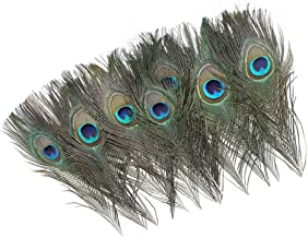 12 PCS Real Natural Peacock Eye Feathers 10-12 inch for DIY Craft, Wedding and Holiday Decorations