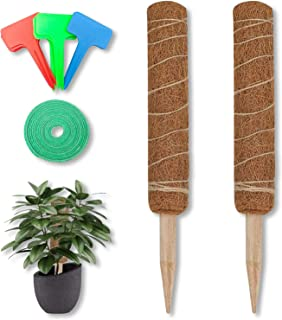 2 PCS of 19.6in Coir Moss Stick Coir Totem Pole for Indoor Plants, 1 Green Velcro + 15 Pcs Plant Label, Coir Moss Stick for Plant Support Extension, Climbing Indoor Plants, Creepers (50 cm 2 Pack)