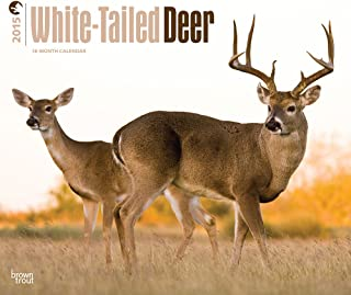 White-Tailed Deer 2015 Deluxe (Multilingual Edition)
