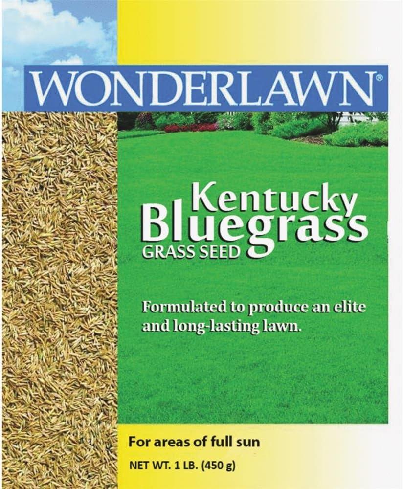 Barenbrug USA 50201 New life Kentucky Bluegrass Seed Grass OFFicial shop