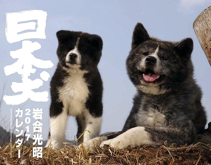 会議専門知識ゴージャス2017カレンダー 日本犬 ([カレンダー])