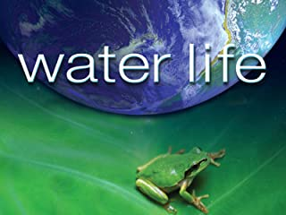 Water Life