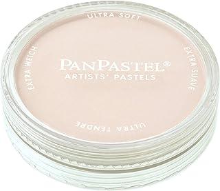 PanPastel 27808 Ultra Soft Artist Pastel, Raw Umber Tint, 780.8