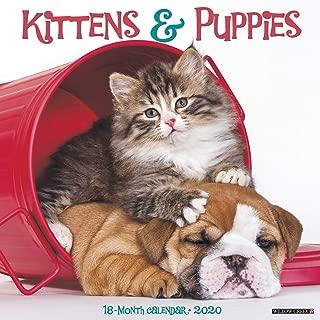 Best kittens and puppies calendar 2018 Reviews
