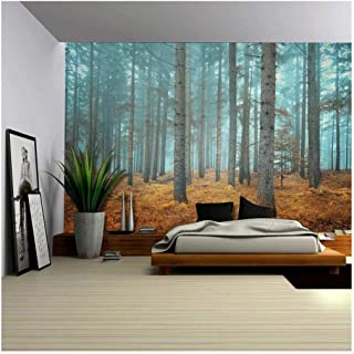 Wall26 - Beautiful Dreamlike Forest in Autumn Time - Wall Mural, Removable Sticker, Home Decor - 100x144 inches