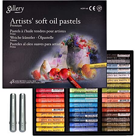 Professional Assorted Colors Mungyo Gallery Soft Oil Pastels Set of 48