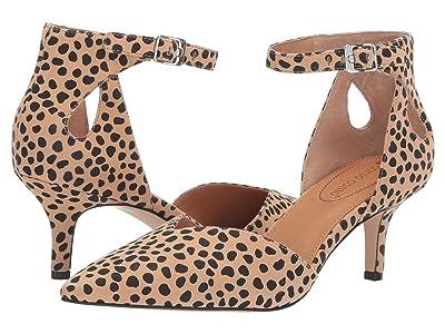CC Corso Como Devorah (Tan/Black Leopard Spot) Women
